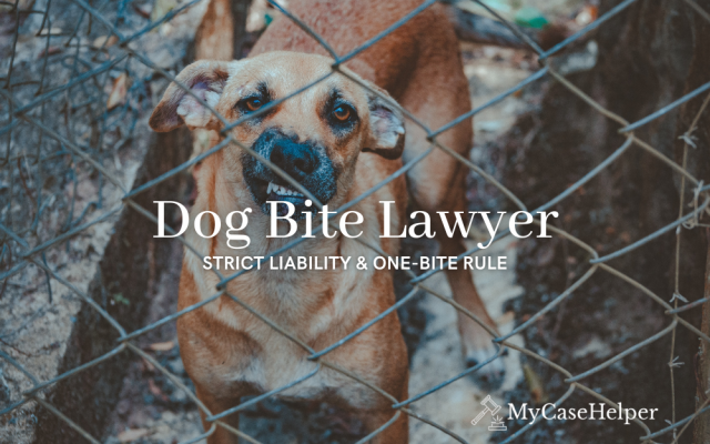 Dog Bite Lawyer | Strict Liability & The One-Bite Rule